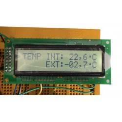 Termómetro de interior y exterior